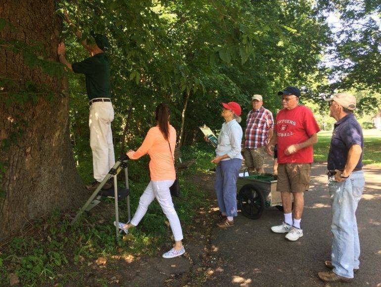 Master Tree Stewards of Union County.jpg