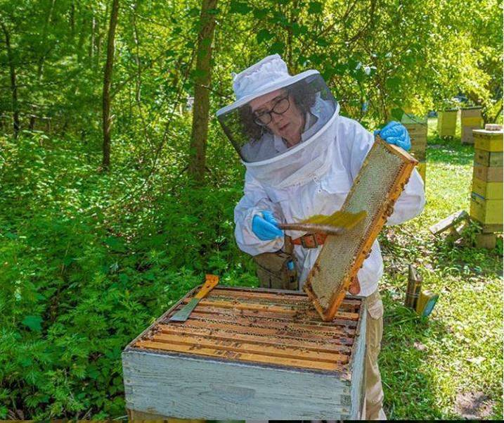 Mary EMGold Beekeepers3 Pulling Honey.JPG