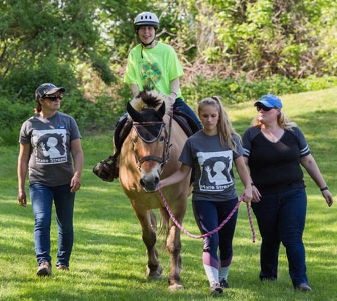 Proposed Special License Plates Would Support Therapeutic Riding In