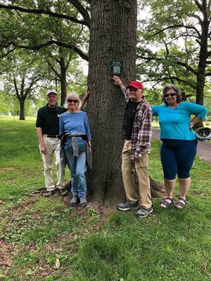 """New """"Tree Trail"""" in Rahway River Park Identifies and Introduces Distinctive Trees to Visitors"""