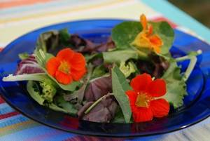 Melinda Myers, Edible Flowers, Home and Garden