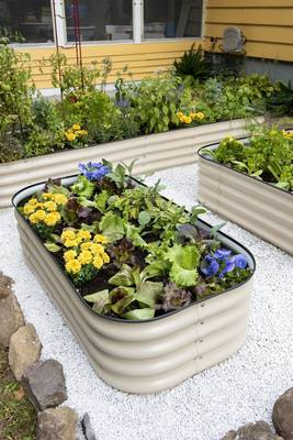 Carousel image fc7358889276261a12a4 beee11c53276f1b23827 metal raised bed photo credit gardenerssupplycompany 2