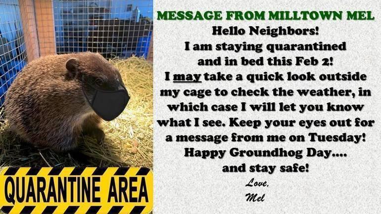 Milltown Mel To Quarantine For Groundhog Day 2021