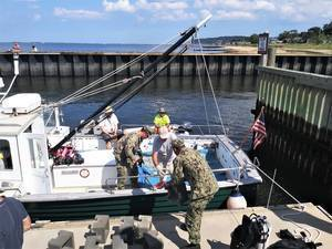 More than 1 Million Oysters Now Growing in 'Castles' at Bottom of Raritan Bay