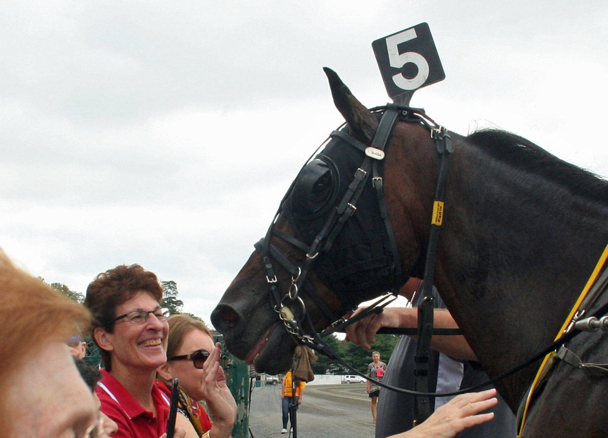 foiled again  the richest standardbred of all time  to