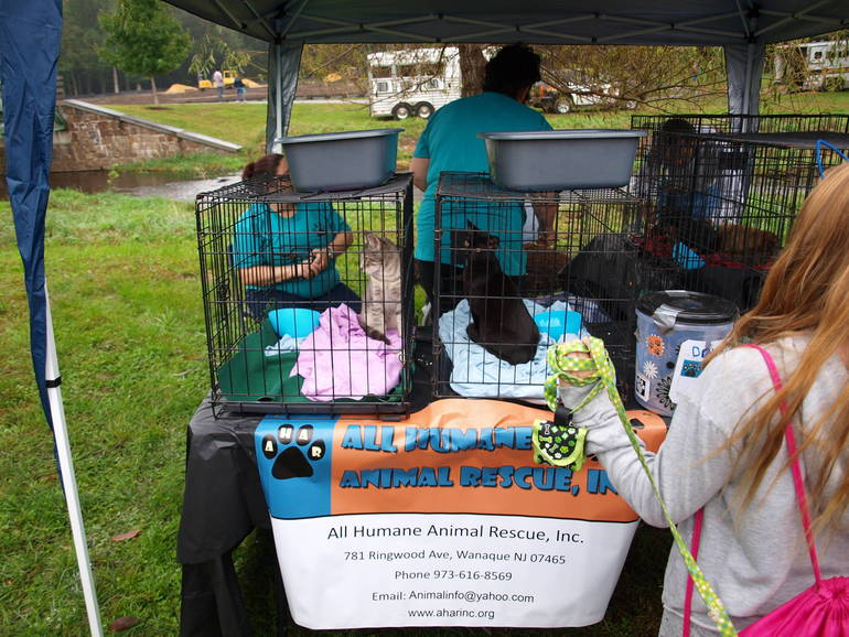 Paws in the Park 2018