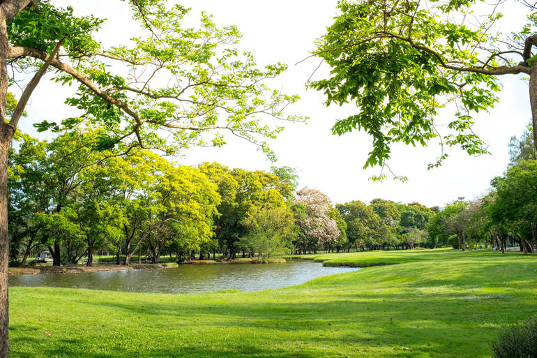 New Jersey Golf Courses and State Parks to Reopen on Saturday