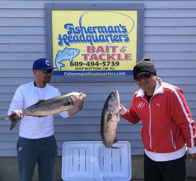 Jersey Shore Outdoors: LBI Fishing Update by Jim Hutchinson Sr