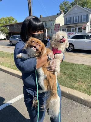 After Being Evacuated From Flooded Apartment, St. Hubert's  Reunites Woman and Her Dogs