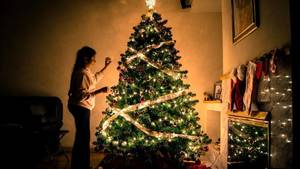 🎄Christmas Traditions and Interesting History Behind a Few of Them.
