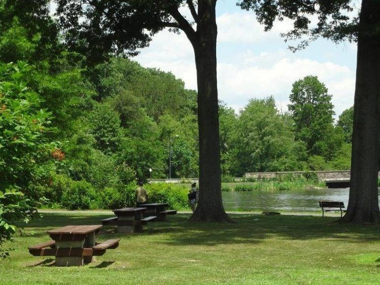Picnic areas in Union County parks.jpg