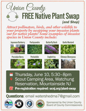 """Swap your """"Bad"""" Plants for Native Species that Add Color and Variety to the Garden"""