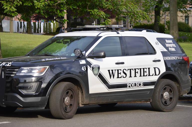 Police car by Daniel Han.JPG