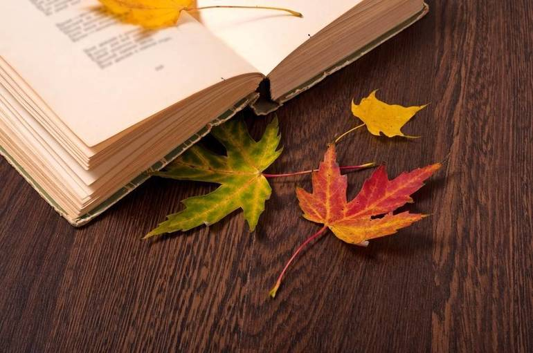 Take a New Journey Through Reading