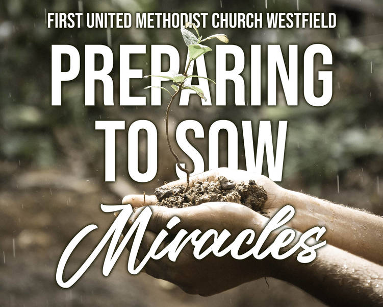 Preparing to Sow Miracles.jpg