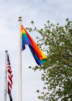 Carousel image 0999c87a4f1d3e976a3f b14ab880c2433a07a04f be24cc6c048e3a190117 pride flag cover