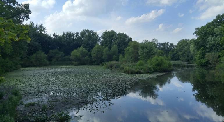 Reservoir Roman C.jpg