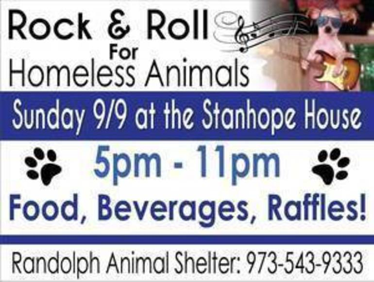 Rock & Roll for homeless animals