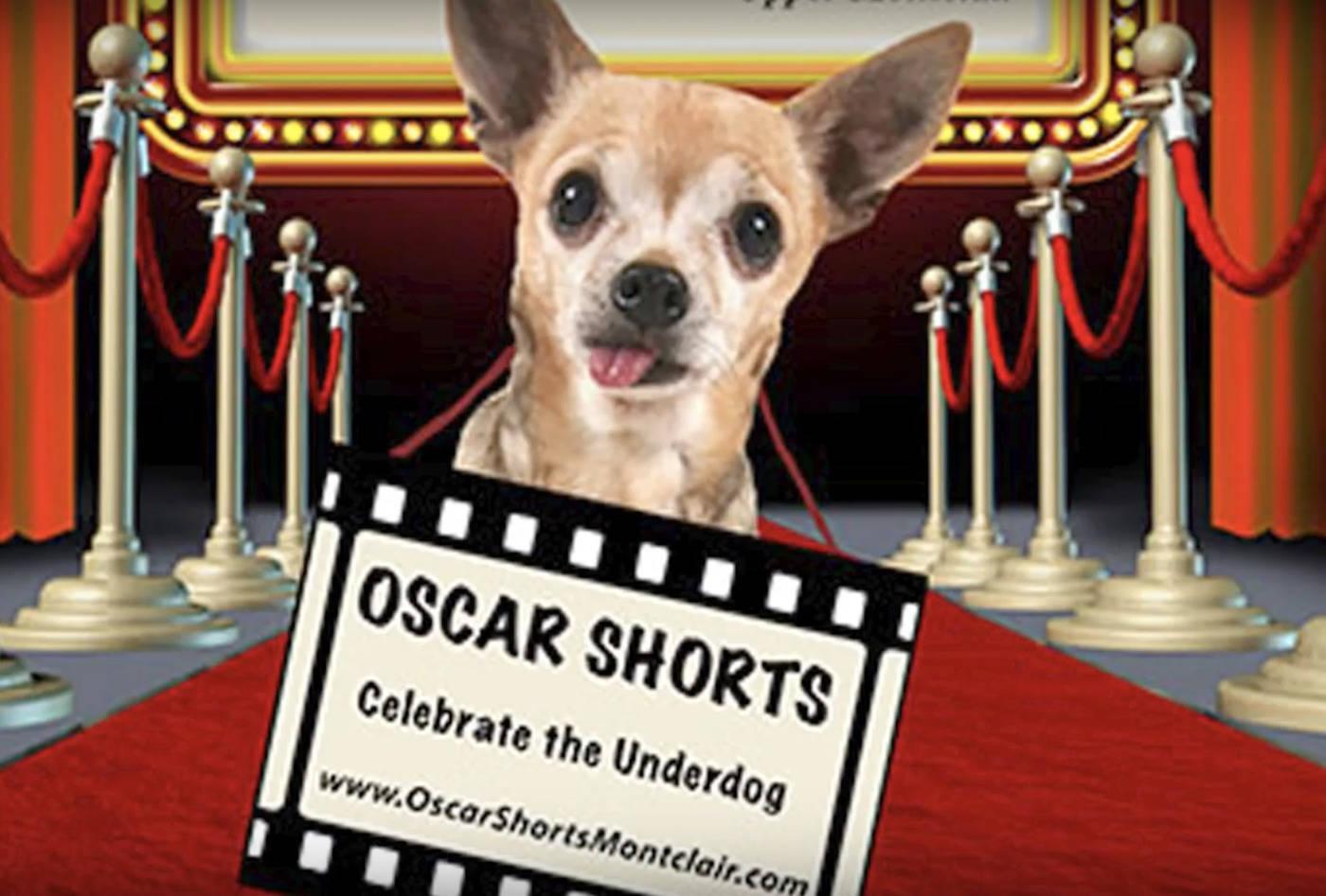 OscarShorts.png