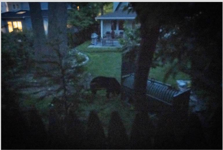 Screen Shot 2020-05-20 at 11.27.48 AM.png