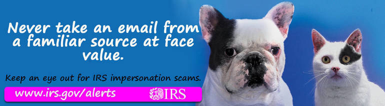 Scam-ImposterDogCat_advertiser_digital.jpg