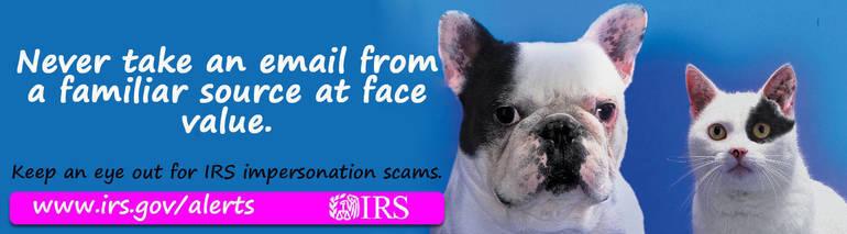 Scam-ImposterDogCat_advertiser_digital.jpg