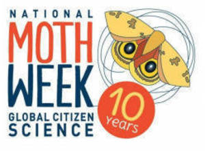 The Moths are Back in Town: N.J. State Assemblyman Sterley S. Stanley to Present Joint Legislative Resolution to National Moth Week at East Brunswick Moth Night, July 23