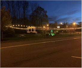 Chatham Borough Economic Development Advisory Committee (EDAC) Announces Seating Area for Dining at Reasoner Park Gazebo