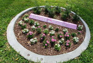 The designated parking bumper of Meadow Pollack is now a flower garden at Princess Meadow's Playground at Betti Stradling Park in Coral Springs.