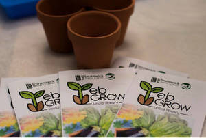 EB Grow Seed Library Returns In 2021 With Seeds For Gardeners