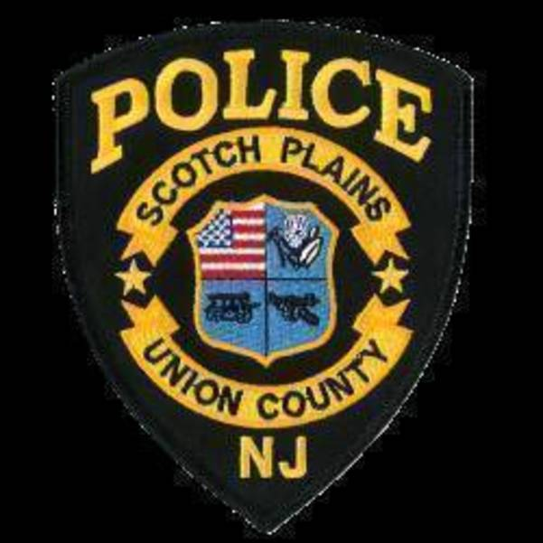 SPPD logo.jpg