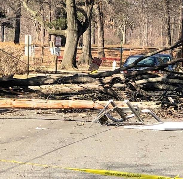 Downed Tree Limb and Electrical Wires Closes Section of Plainfield Avenue