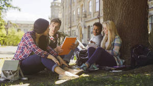Students Under Tree