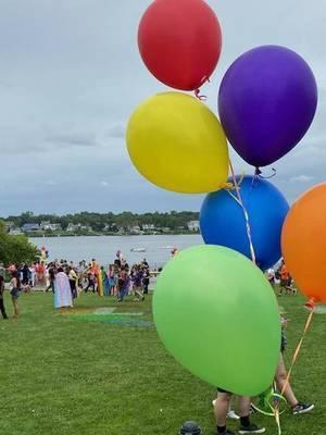 LGBTQ Community Celebrates 'Pride in the Park'