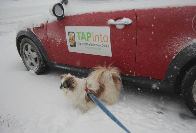 TAPinto Mini Snow Ricky Jan 2018.JPG