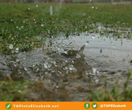 Rain drop hitting puddle in the grass, splashing upwards.