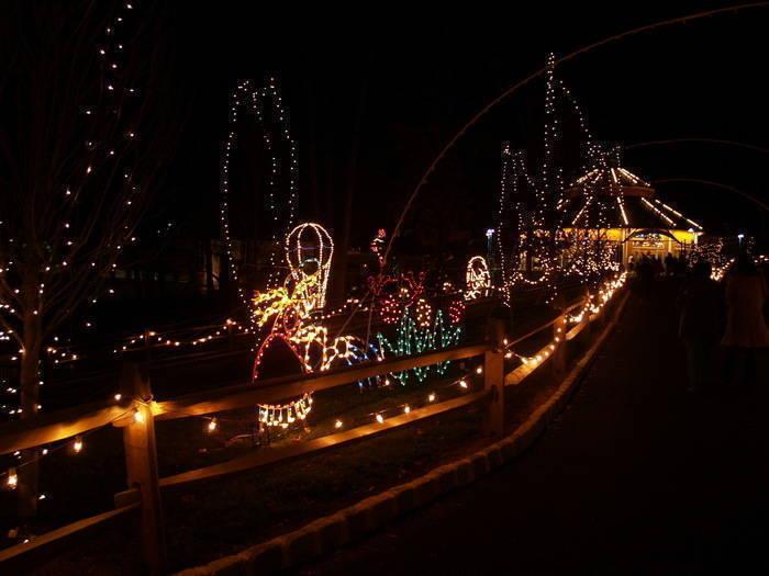 TBZ Holiday Lights b.jpg
