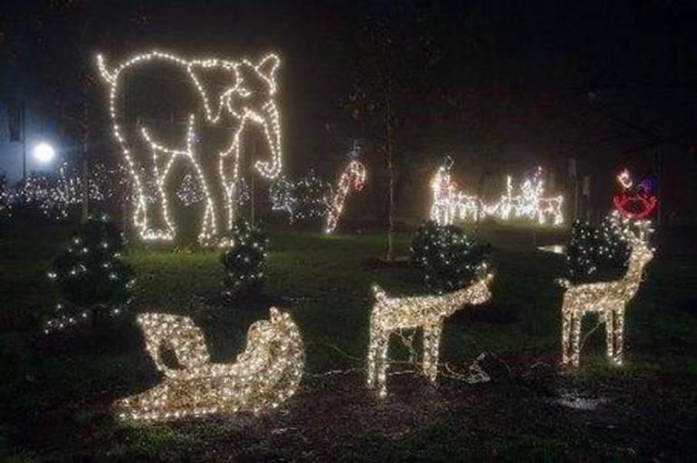 TBZ Holiday Lights a.jpg