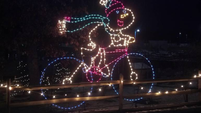 TBZ Holiday Lights c.jpg