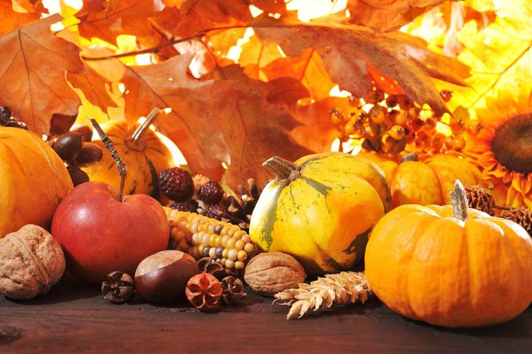 Enjoy some Thanksgiving Trivia