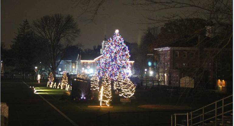 5a0dc5aa95e6aa7aea15_Tree_Lighting_a.JPG