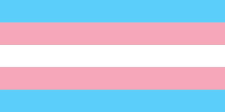 Transgender_Pride_flag.png