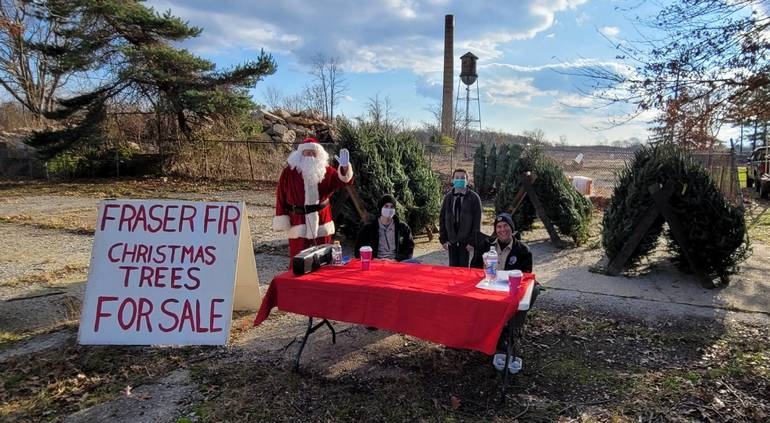 Milltown Boy Scout Troop 33 Holding Holiday Christmas Tree Sale