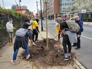 Newark Downtown District Leverages Federal Funds to Plant More Street Trees