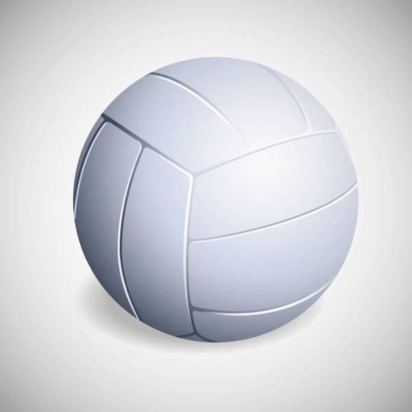 Girls Volleyball:  Cedar Grove Tops Belleville