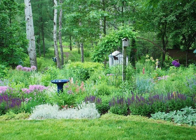 Best crop 6ed9a7755e9bcc81e693 109f34a7c8ff1b004164 wildlife friendly garden melindamyersllc