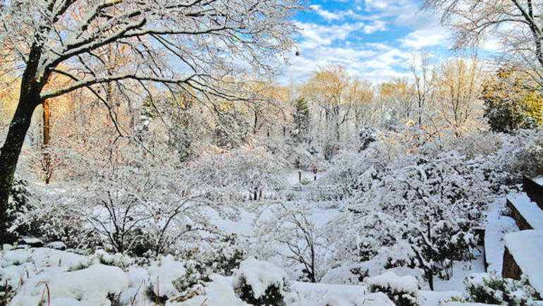 Winter at RRA.jpg