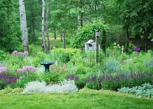 Carousel image 7b8a23544b7f9d85acf2 109f34a7c8ff1b004164 wildlife friendly garden melindamyersllc